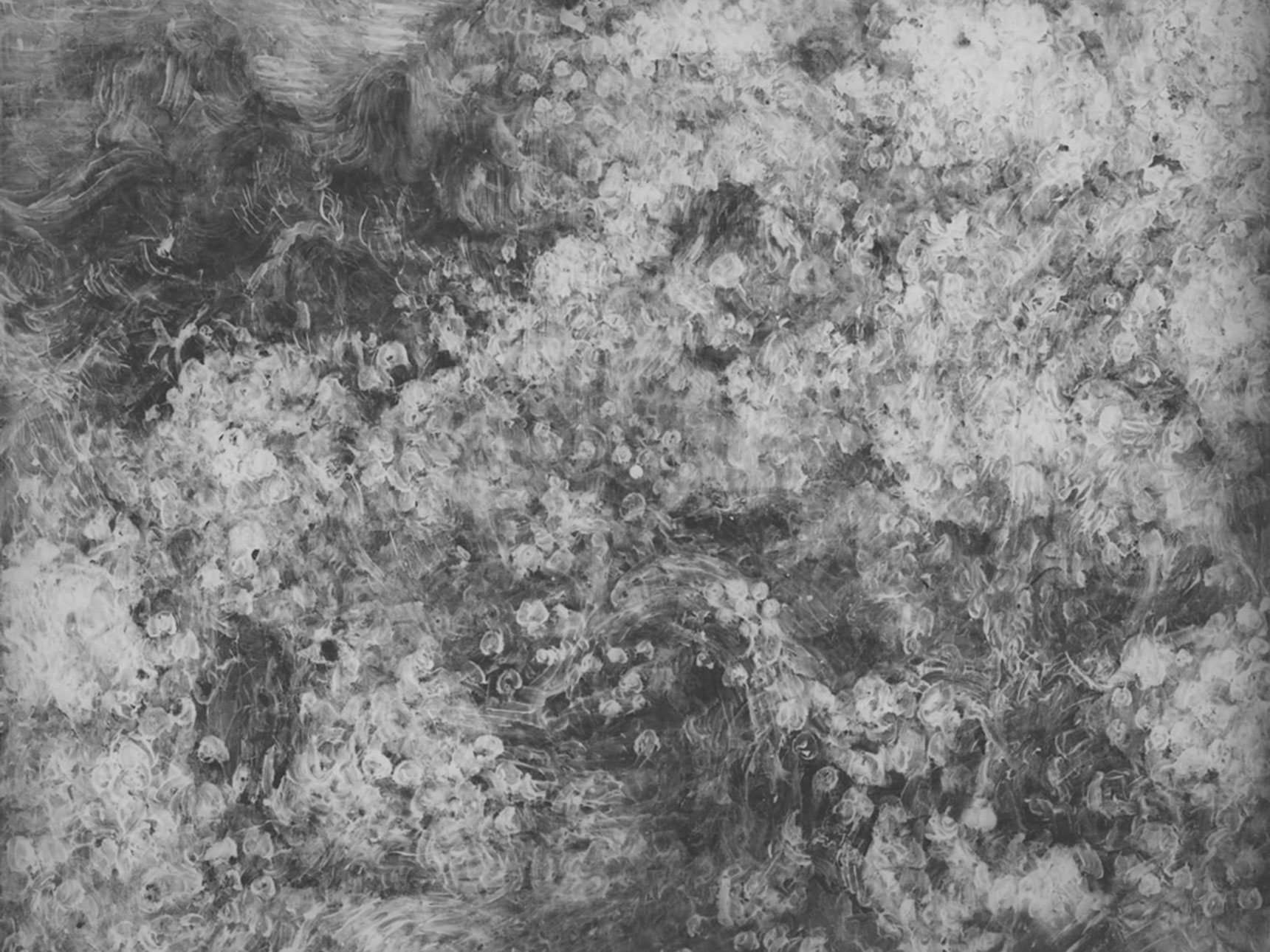 X-ray view of van Gogh's painting, Ravine, revealing drawing underneath paint