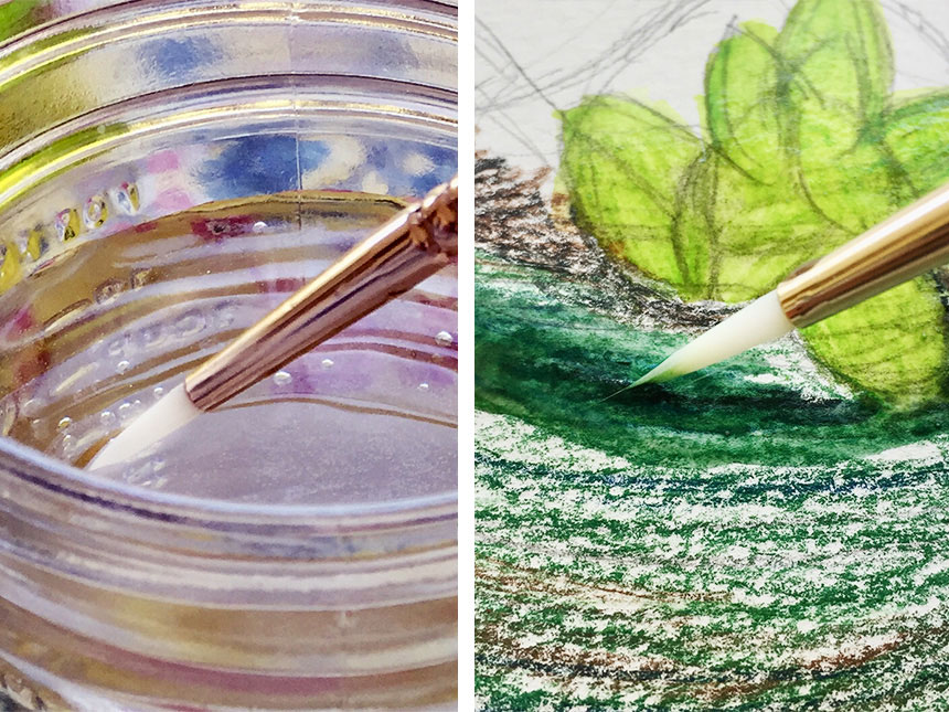 dipping brush into jar of water and using wet brush on watercolor pencil shadings