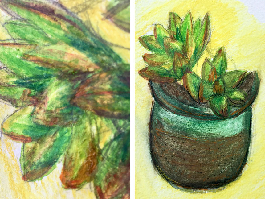 details of finished drawing, depicting potted plants