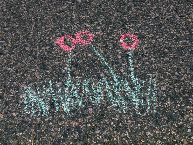 chalk drawing of red flowers and grass on asphalt