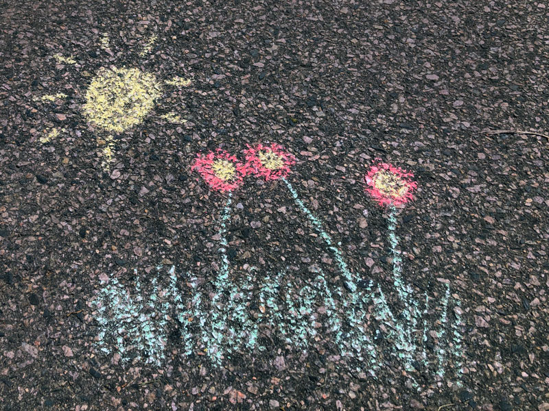 chalk drawing of sun shining down on red flowers and grass