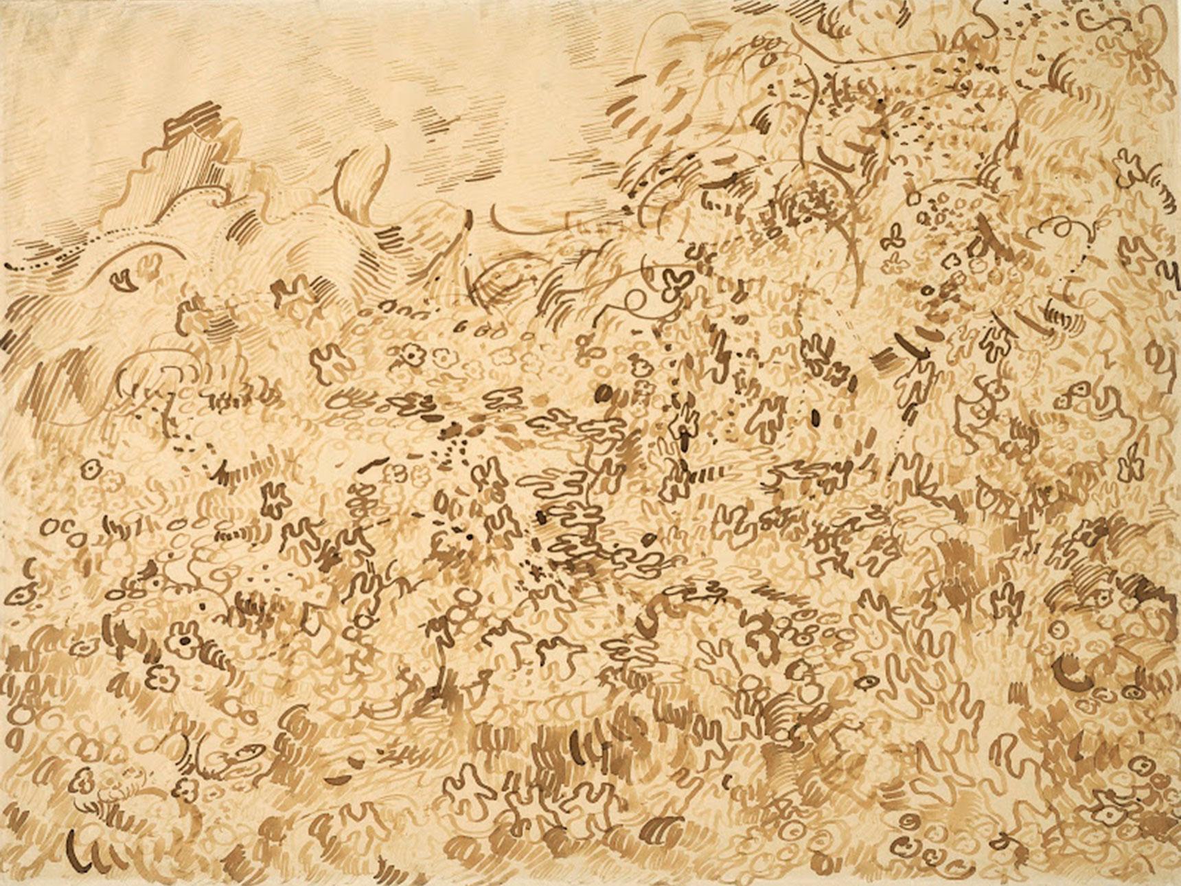 Vincent van Gogh's drawing, Wild Vegetation