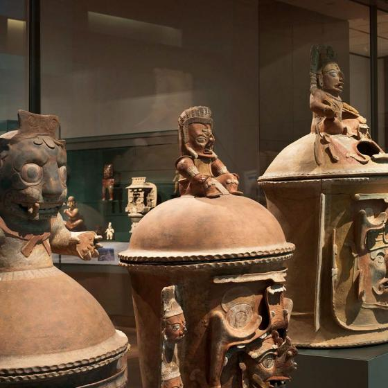 View of objects in Ancient Americas gallery