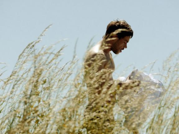 Film Still: Wild