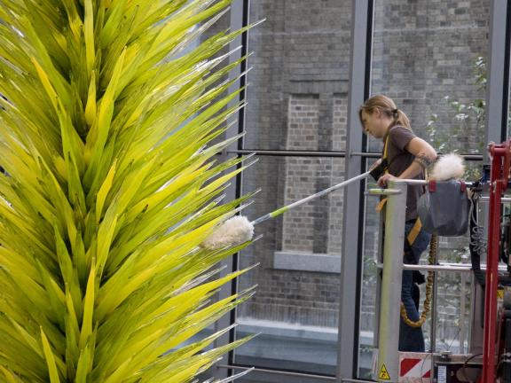 Collections care staff dust Dale Chihuly's Lime Green Icicle Tower