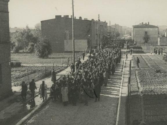 image of crowd of people in street guarded by armed soldiers