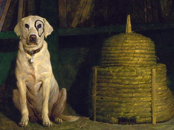Painting of dog, Kleberg, by Jamie Wyeth