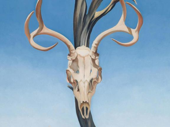 Detail of Georgia O'Keeffe's painting, Deer's Skull with Pedernal