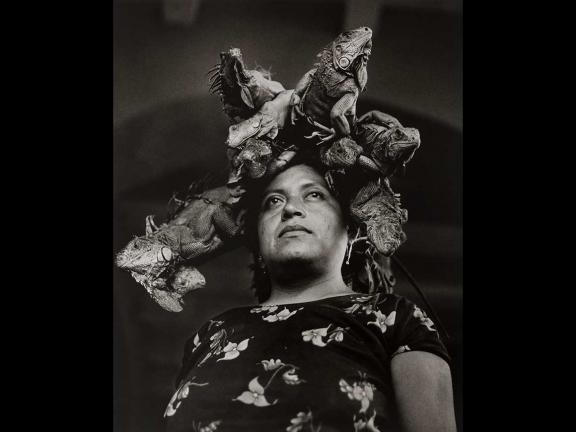 Graciela Iturbide's photograph, Nuestra Señora de las Iguanas/Our Lady of the Iguanas, Juchitán, México