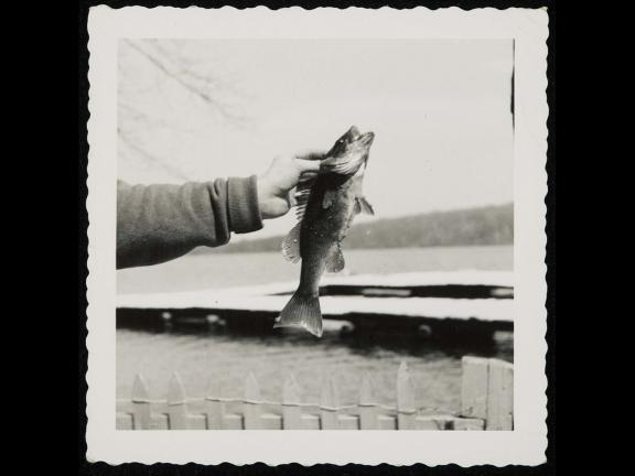 Person holding fish