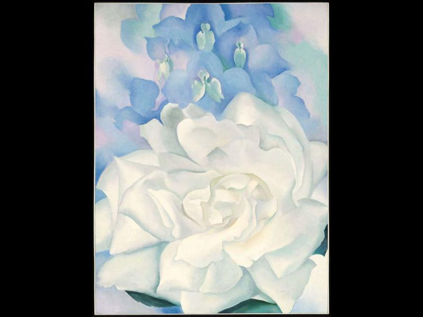 Georgia O'Keeffe's painting, White Rose with Larkspur No. 2