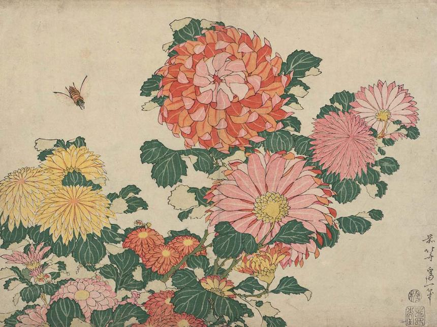 Detail of Katsushika Hokusai's print, Chrysanthemums and Horsefly