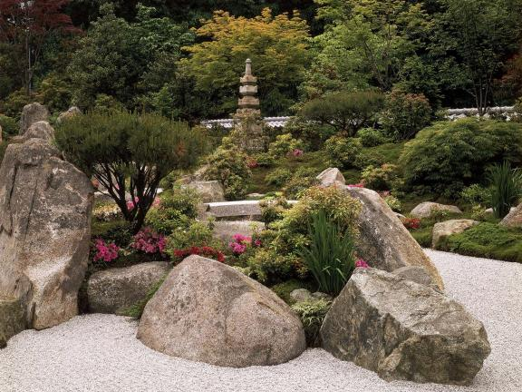View of Japanese Garden, with rocks and shrubs amidst raked pebbles